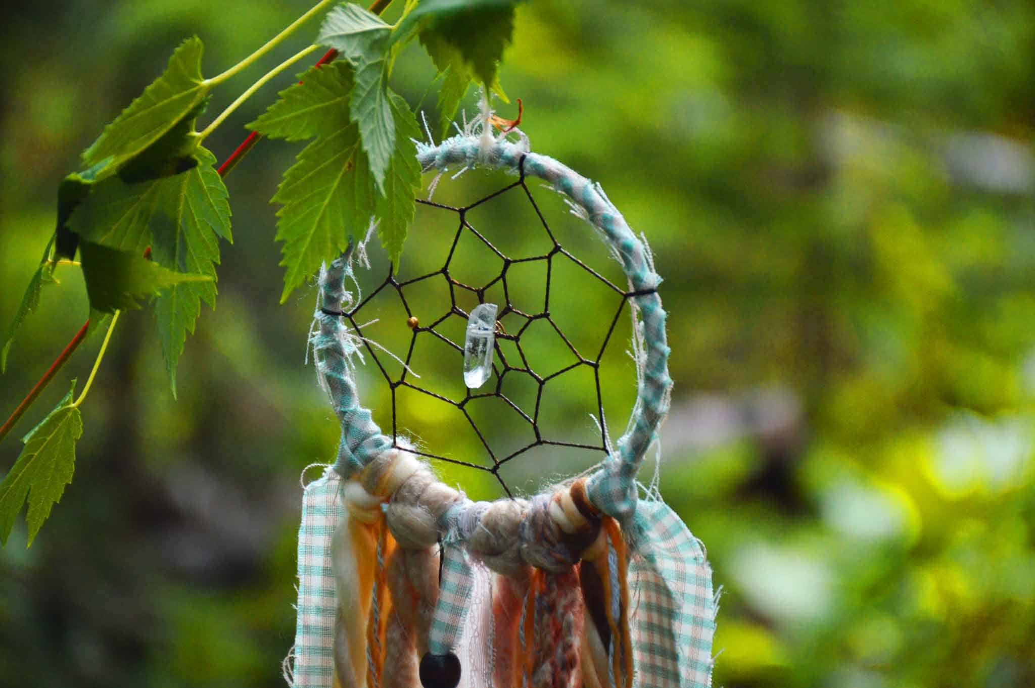 Dreamcatcher hanging in the forest
