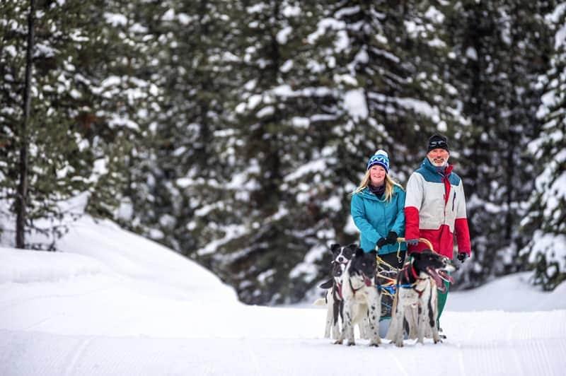 Dog sledding with Candle Creek Dogsledding tours at Big White Ski Resort in Kelowna, Canada